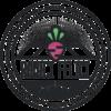 Radici Felici Logo